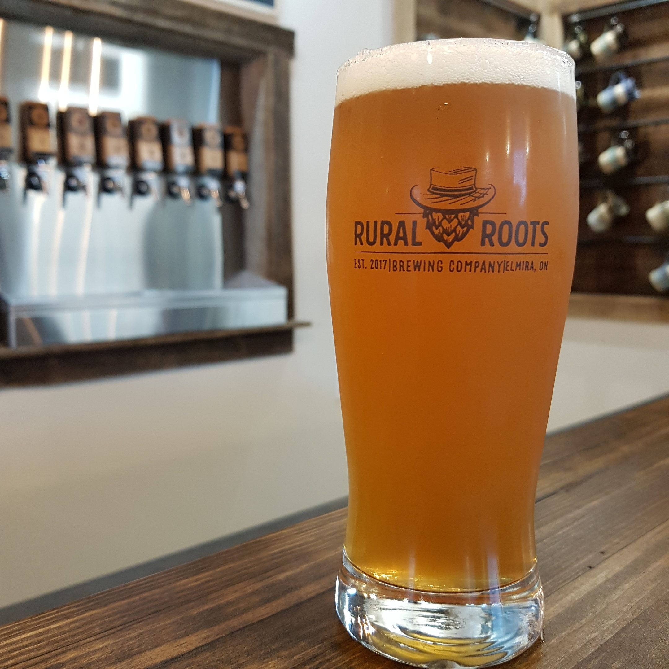 https://ruralrootsbrewery.ca/wp-content/uploads/2019/08/NQIPA_RuralRoots-e1565751647479.jpg