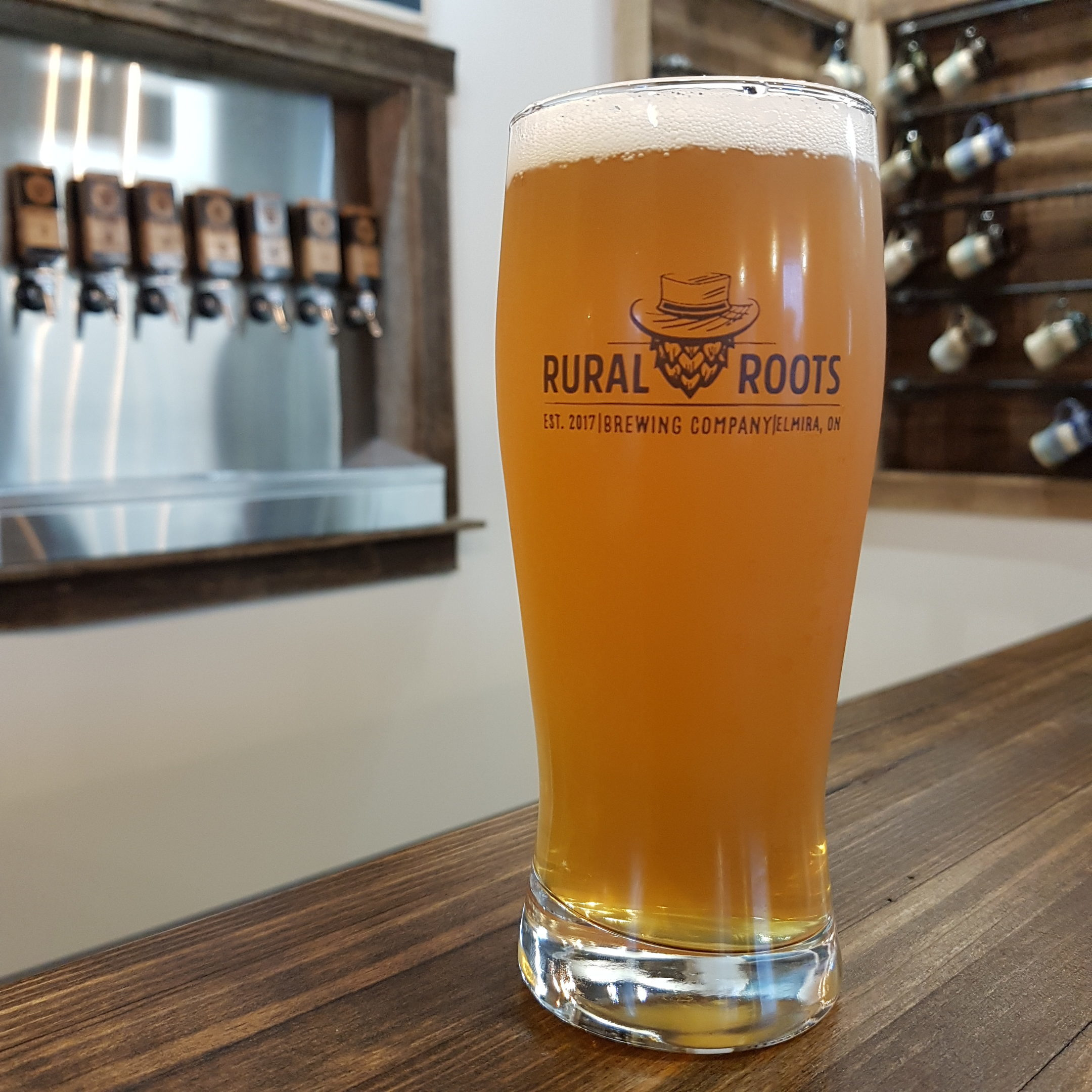 https://ruralrootsbrewery.ca/wp-content/uploads/2019/08/YesHoneyCreamAle_RuralRoots-e1565751346719.jpg
